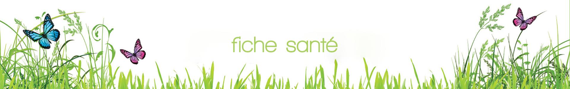 fiche-sante-banniere.png